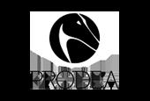Prodea Group dark