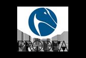Prodea Group